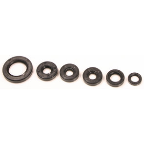 Bombardier/Cam-Am Engine Bearing & Oil Seal Sets & Kits