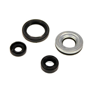 Arctic Cat Engine Oil Seal Sets