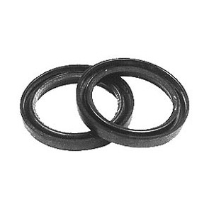 Briggs & Stratton Oil Seals