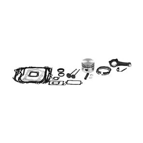 Briggs & Stratton Overhaul Kits