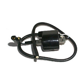 Ski-Doo External Ignition Coils