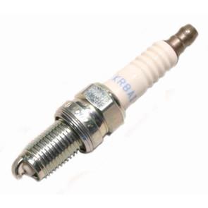 NGK Special Spark Plug