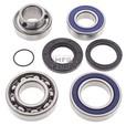 Drive Shaft Bearing & Seal Kit