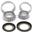 Steering Bearing & Seal Kit