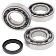Crankshaft Bearing & Seal Kit