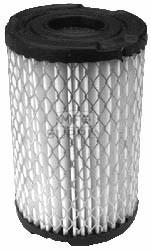 19-9533 - Tecumseh 34700B Air Filter