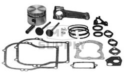 23-6859 - Overhaul Kit for Briggs & Stratton