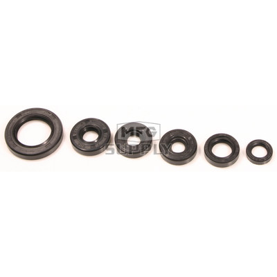 822203 - Bombardier ATV Oil Seal Set