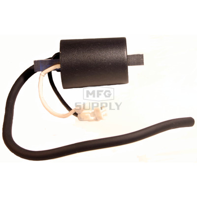 SM-01114 - External Polaris Ignition Coil for PTO side 05-06 700/900 Snowmobile Engines