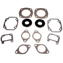 711053 - Arctic Cat Professional Engine Gasket Set
