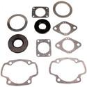 711055 - Arctic Cat Professional Engine Gasket Set