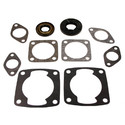 711058 - Arctic Cat Professional Engine Gasket Set