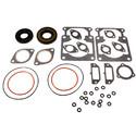 711063D - Arctic Cat Professional Engine Gasket Set