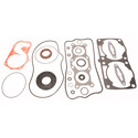 711310 - Polaris 800 Snowmobile Gasket set with oil seals