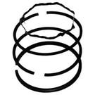 23-6773 - B&S 391781 Rings (+.010)