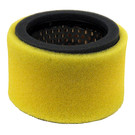 19-6698 -  Air Filter Replaces Wisconsin Robin EY1573620101