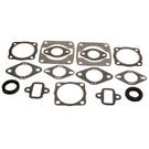 711007 - Kohler Professional Engine Gasket Set