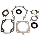 711034 - Arctic Cat Professional Engine Gasket Set