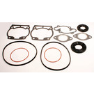 711170 - Ski-Doo Professional Engine Gasket Set