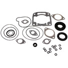 711179 - Arctic Cat Professional Engine Gasket Set