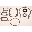 711195 - Ski-Doo Professional Engine Gasket Set