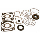 711249 - Arctic Cat Professional Engine Gasket Set