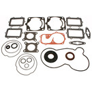 711305 - Professional Engine Gasket Set