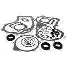 811827 - Arctic Cat ATV Complete Gasket Set with oil seals