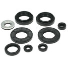 822258 - Arctic Cat ATV Oil Seal Set