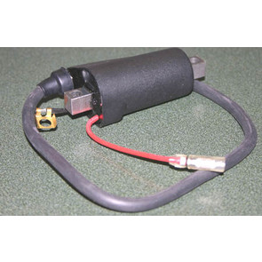 01-084-8 - Polaris Fuji External Ignition Coil