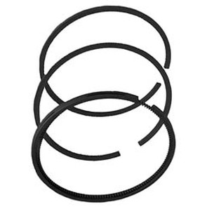 23-8795 - B&S 493388 Piston Ring Set (+.010)