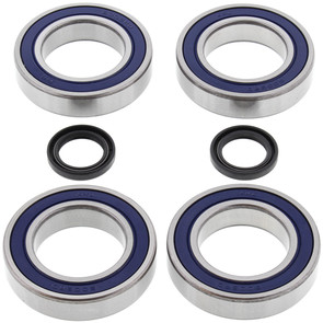 25-1128 - Kawasaki KLT110/200/250 Rear Wheel Bearing Kit with Seals.