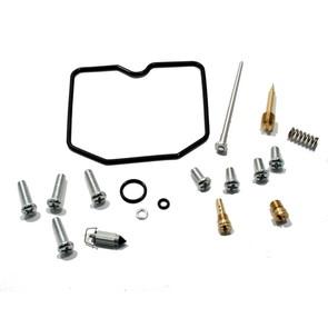 Complete ATV Carburetor Rebuild Kit for 08-09 Arctic Cat 250 2x4, 08 DVX 250
