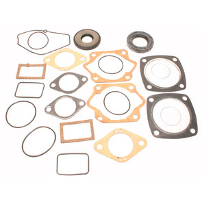 711025 - Ski-Doo Professional Engine Gasket Set