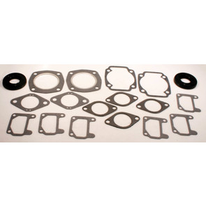 711032 - Arctic Cat Professional Engine Gasket Set