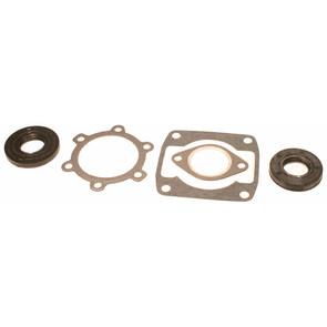 711061A - Arctic Cat Professional Engine Gasket Set