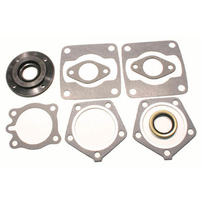 711073 - Polaris Professional Engine Gasket Set