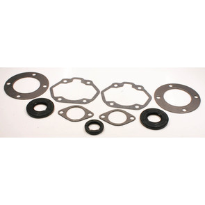 711116 - Moto-Ski Professional Engine Gasket Set