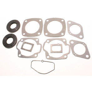 711117 - Moto-Ski Professional Engine Gasket Set