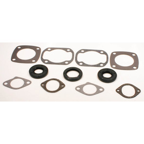 711119 - Ski-Doo Professional Engine Gasket Set