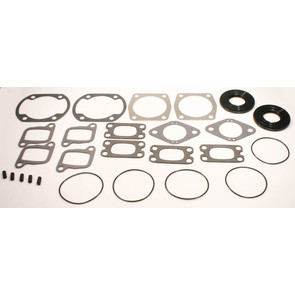 711162D - Ski-Doo Professional Engine Gasket Set