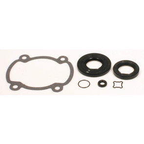 711164 - Ski-Doo Professional Engine Gasket Set