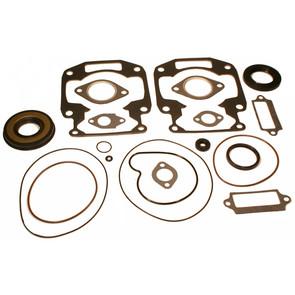 711190 - Arctic Cat Professional Engine Gasket Set