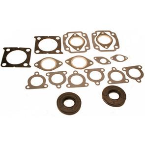 711245 - Arctic Cat Professional Engine Gasket Set