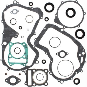 811810 - Suzuki ATV Complete Gasket Set with oil seals