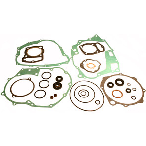 811816 - Honda ATV Gasket Set with Oil Seals