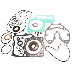 811843 - Honda ATV Gasket Set with Oil Seals