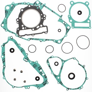 811853 - Bombardier ATV Gasket Set with oil Seals for 650 4-cycle DS.