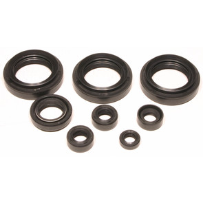 822151 - Suzuki ATV 4 cycle Oil Seal Set