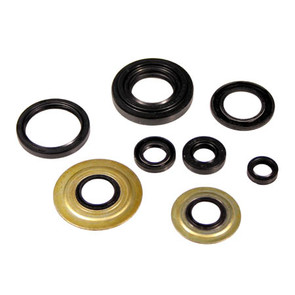 822155 - Yamaha ATV 4 cycle Oil Seal Set